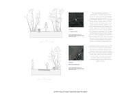 prikaz prve stranice dokumenta Grafički prilog 9: Presjeci segmenata staze Rovinjštine
